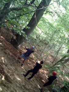 wspianczka w lesie